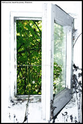 Forgotten View by eskilofreniko