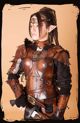 Wood Elven Armor