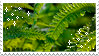 sparkly fern stamp by hearthstoneadopts