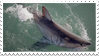 shark stamp by hearthstoneadopts