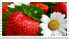 strawberry stamp by hearthstoneadopts