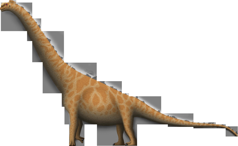 Huanghetitan ruyangensis