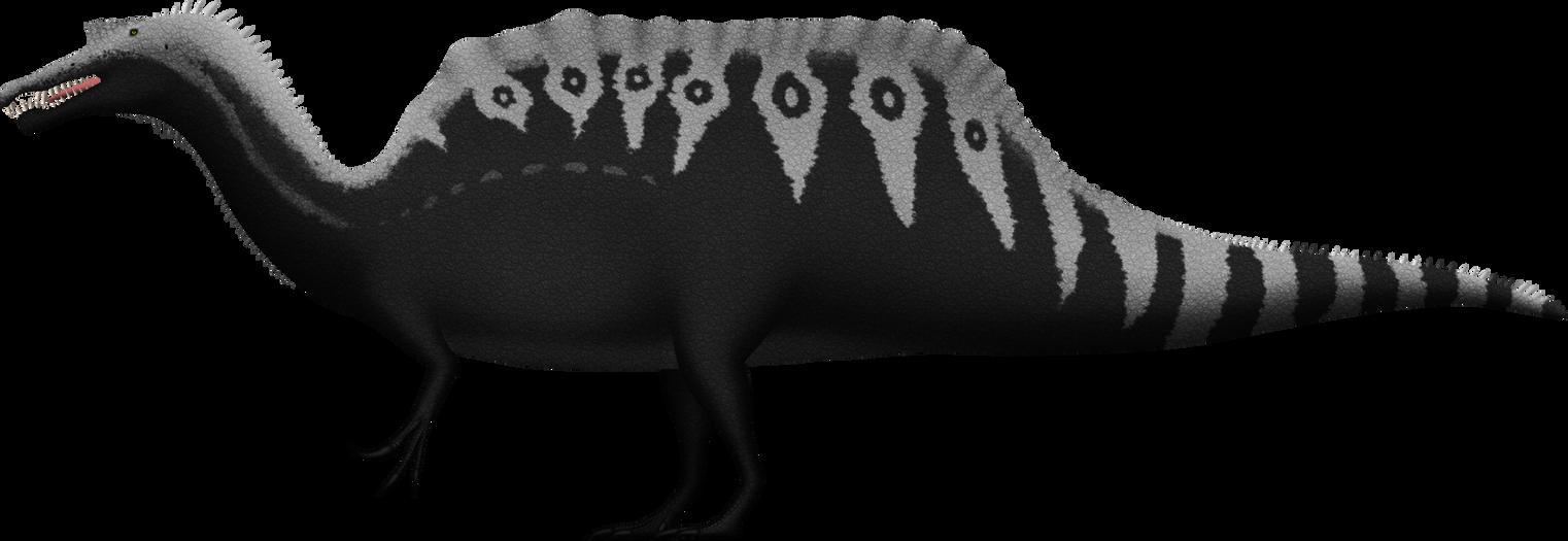 spinosaurus aegyptiacus by spinoinwonderland on deviantart. Black Bedroom Furniture Sets. Home Design Ideas