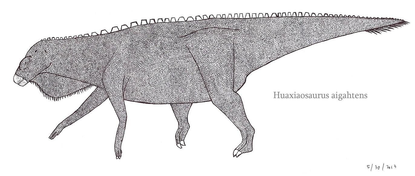 Huaxiaosaurus, the Ornithopod Titan by SpinoInWonderland
