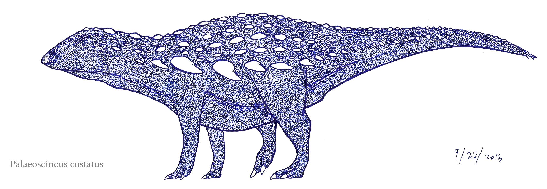 Palaeoscincus the dinosaurian skink