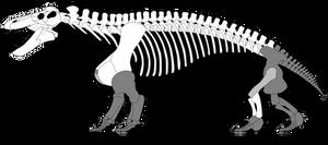 Jonkeria truculenta skeletal reconstruction by SpinoInWonderland
