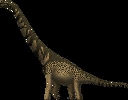 Cedarosaurus weiskopfae by SpinoInWonderland