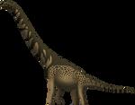 Cedarosaurus weiskopfae