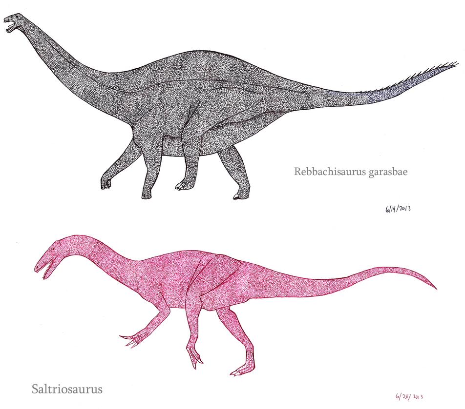 Rebbachisaurus and Saltriosaurus by SpinoInWonderland