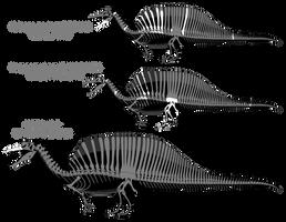 Spinosaurus aegyptiacus skeletal reconstructions by SpinoInWonderland