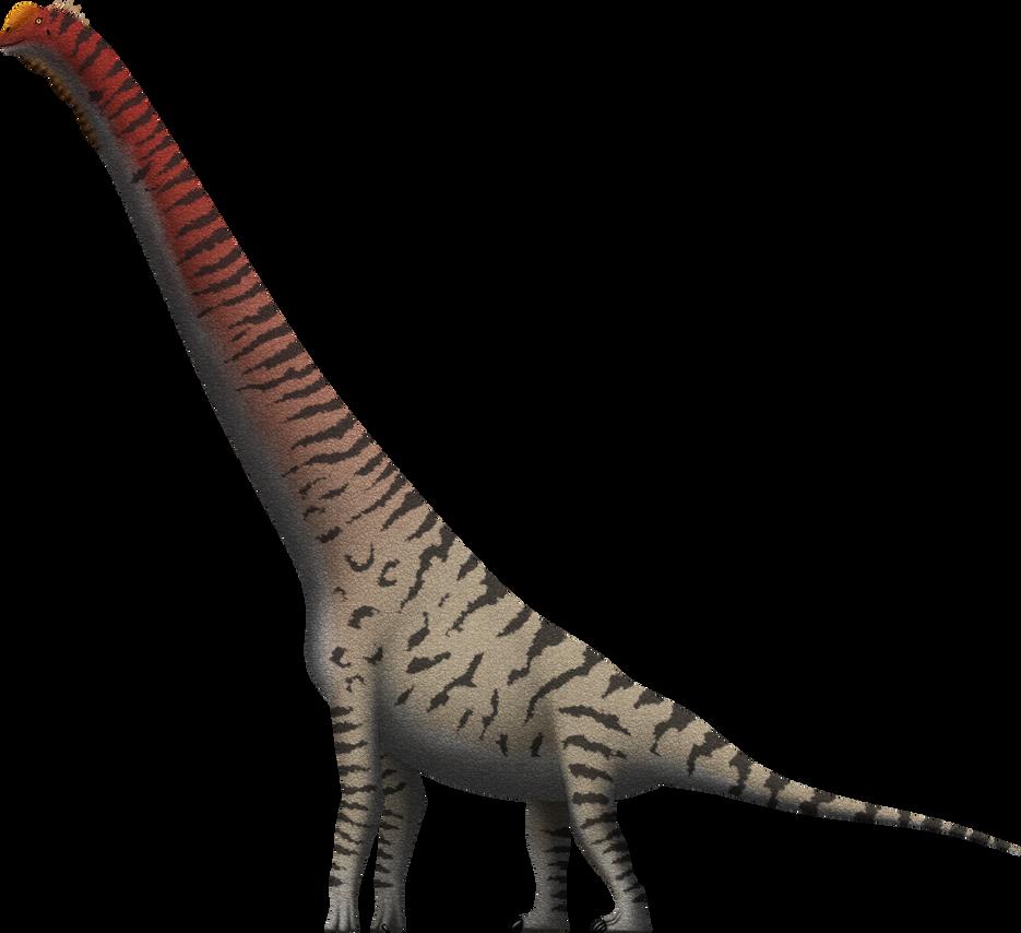 Giraffatitan Brancai By SpinoInWonderland On DeviantArt