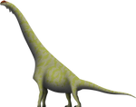 The Dry Mesa Brachiosaur