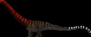 Barosaurus giganteus