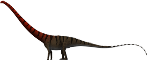 Barosaurus giganteus by SpinoInWonderland