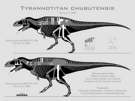 Tyrannotitan chubutensis skeletal reconstructions by SpinoInWonderland