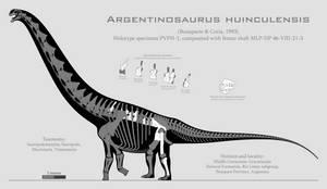 Argentinosaurus huinculensis skeletal by SpinoInWonderland