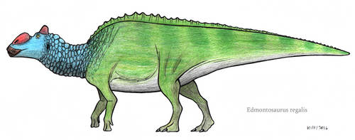 Edmontosaurus regalis (2016) by SpinoInWonderland