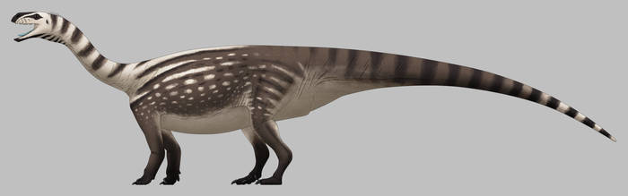 Melanorosaurus readi by SpinoInWonderland