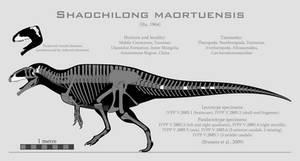 Shaochilong maortuensis skeletal reconstruction