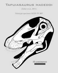 Tapuiasaurus macedoi skull reconstruction