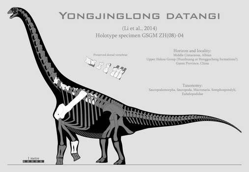 Yongjinglong datangi skeletal reconstruction