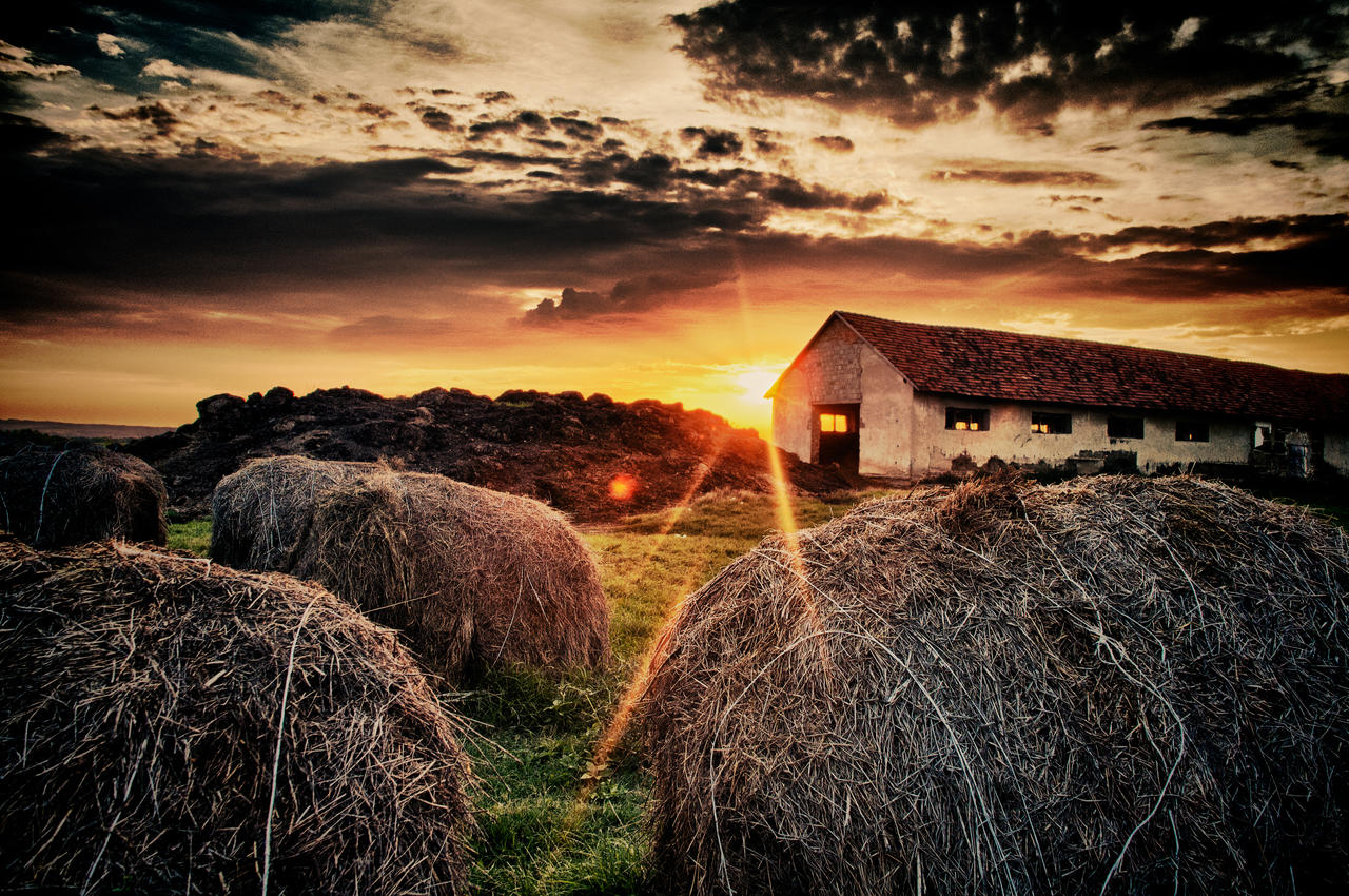 Country Barn Backgrounds 86942