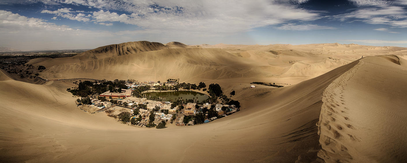 Desert Oasis by scwl