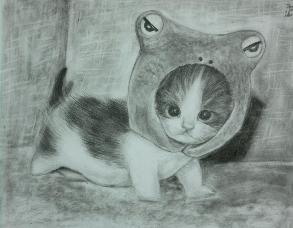 drawing pencil cat cute by vuthu93 on DeviantArt