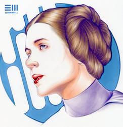 Princess Leia Work-in-Progress