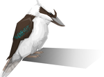 Kookabura Polyvector