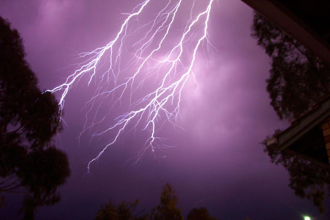 Adelaide Lightning 2003
