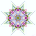 Spring Starflower 4