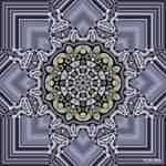 Lithophilous Lace - Starflower