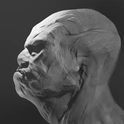 Sketch Sculpt 3