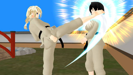 Martial arts Action illustration - KARATE (22) by Leomimus