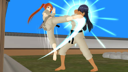 Martial arts Action illustration - KARATE (26) by Leomimus