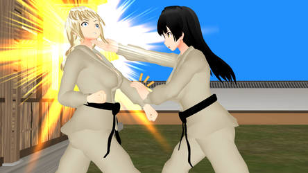 Martial arts Action illustration - KARATE (27) by Leomimus