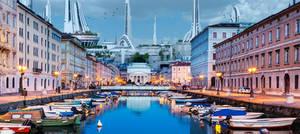 Trieste in the Future