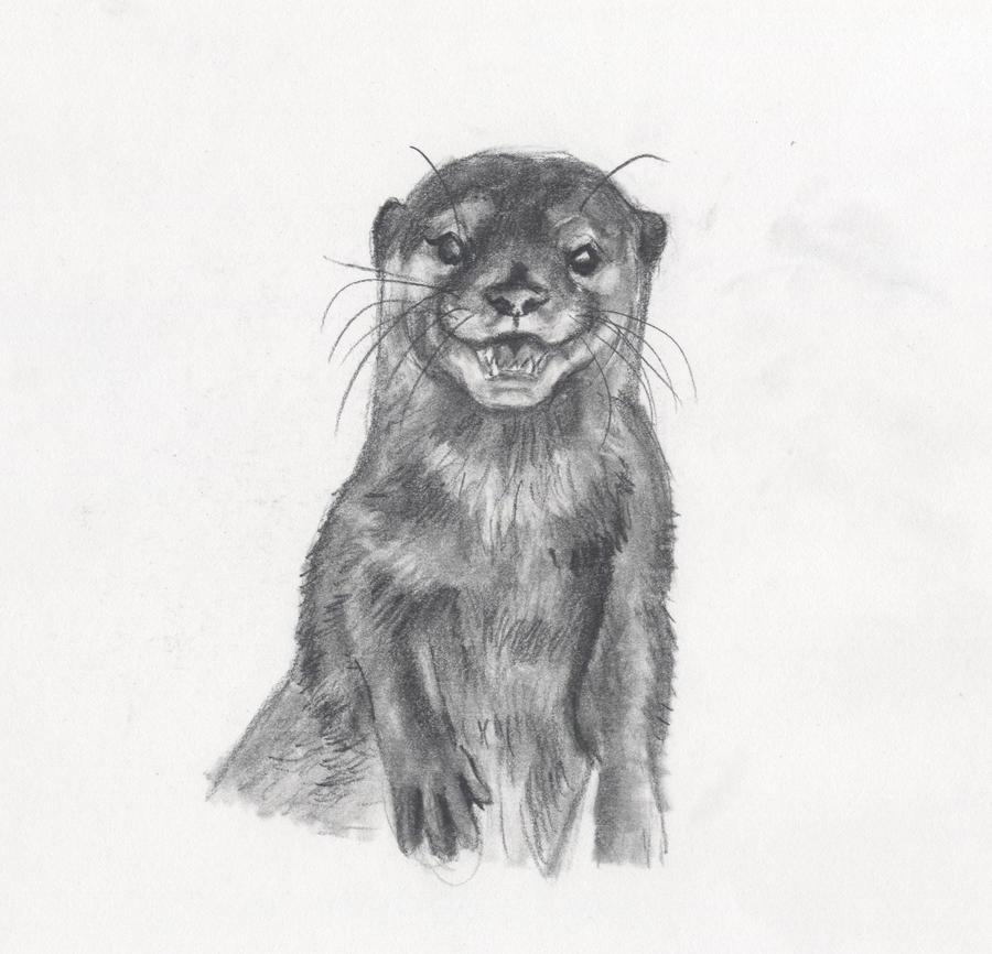 grinning by Kitt-Otter