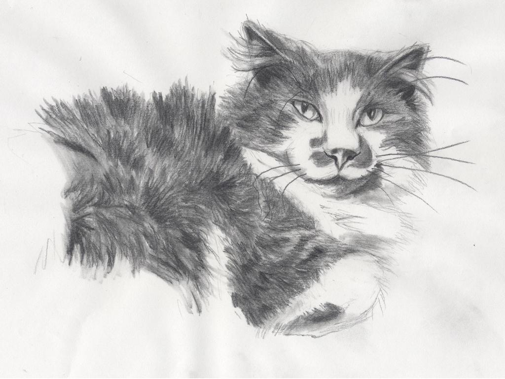 Gandalf the Grey by Kitt-Otter