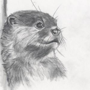 Kitt-Otter's Profile Picture