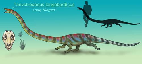 Tanystropheus longobardicus by BangBooDoragon