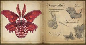 Vampire Moth