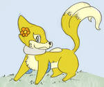 Shanthal the buizel