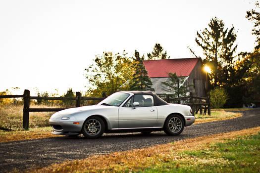 Autumn Roadster.