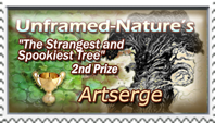 The Strangest and Spookiest Tree - 2nd place by marthig
