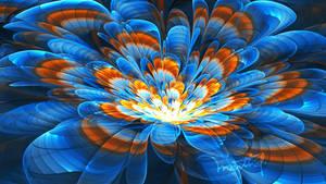 Blooms 3D my Take