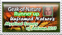 Geak-of-nature-Runner-up- Unframed Nature Contest by marthig