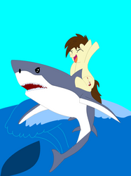 Cam Rides The Shark (Years Later)