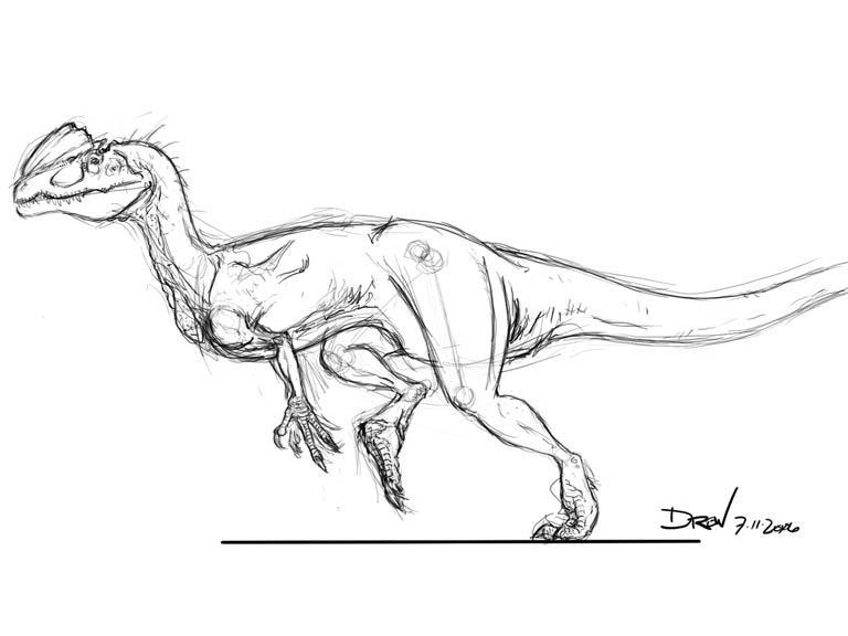 Dilophosaurus Drawing Dilophosaurus witherilli byDilophosaurus Drawing